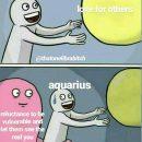 Aquarius meme, astrology meme, zodiac