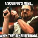 Are you looking for Scorpio memes? We have compiled 20 Scorpio memes that best describes…