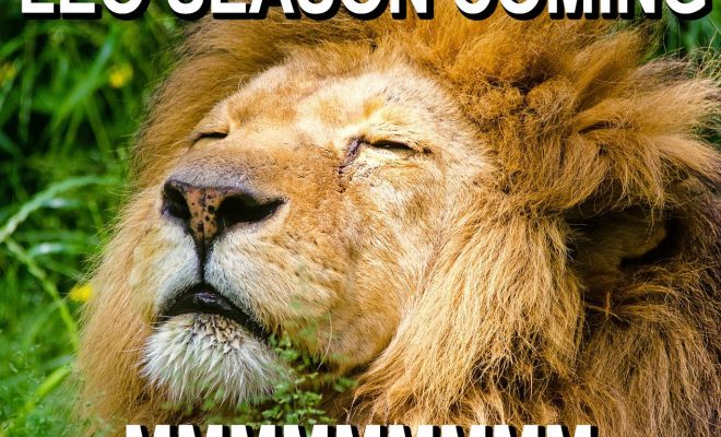 LEO SEASON IS COMING!!!!! Leo Zodiac Meme, Funny Leo Memes, Leo Horoscope, Leo astrology,…