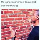 24 Taurus Memes That Will Make You Feel Seen