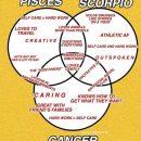 """#pisces explore Pinterest""""> #pisces #leo explore Pinterest""""> #leo #cancer explore Pinterest""""> #cancer #taurus explore…"""