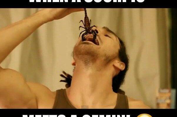 when a scorpio meets a gemini