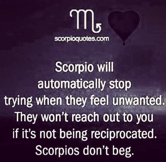 20 Best Scorpio Memes Astrology Special Sayingimages Com