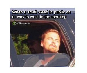 "When You Smell Weed In Public Leo DiCaprio Funny Weed Memes #weedmemes explore Pinterest"">…"