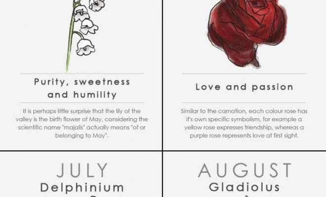 Your birth flower is the bloom associated with the month you were born which…