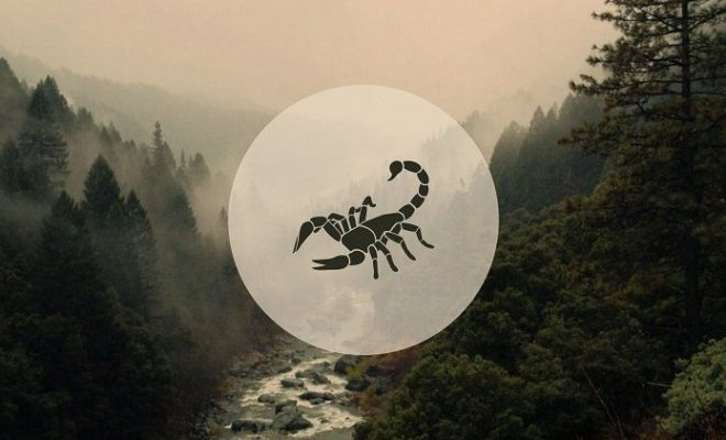 Scorpio November 2019