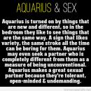 Aquarius – Google Search