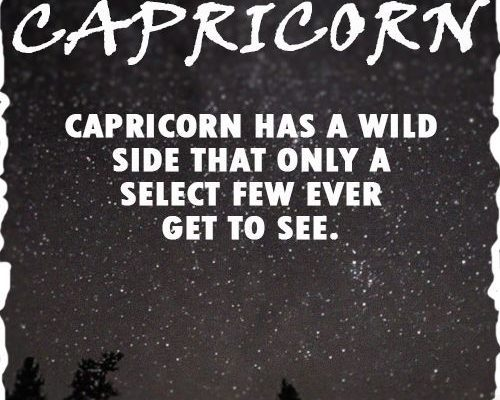 capricorn zodiac sign fun facts