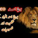 Leo personality   Leo star   burg e asad   hindi -urdu