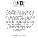 """zodiacspot: """"Find out what your Zodiac sign would say here """""""