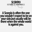 Scorpio by your side