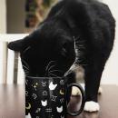 Zodiac Cat Moon Stars Mug – By Kizzozo