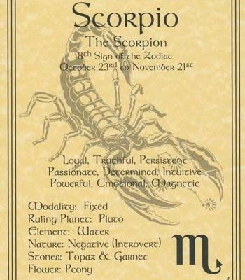 Scorpio – The Scorpion – loyal, truthful, persistent, passionate, determined, intuitive, powerful, emotional, magnetic.…