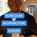 Auricular Acupuncture Points for Allergies