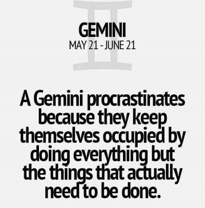 Gemini Zodiac Sign Astrology Meme Joke